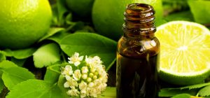 10-Amazing-Benefits-And-Uses-Of-Lime-Essential-Oil1